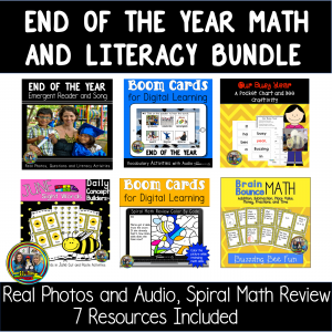 picture of end of the year resources
