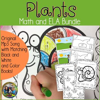 picture of plant worksheets